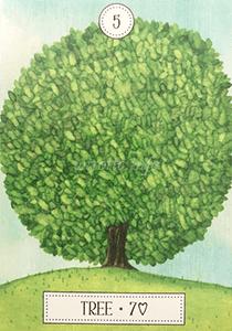 ルノルマン恋占い木の意味