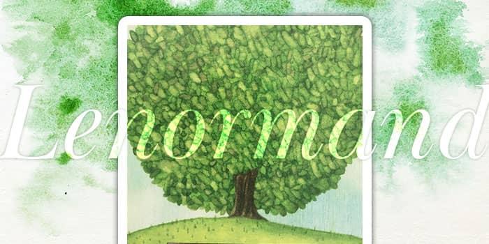 ルノルマンカード木の意味