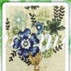 ルノルマンカード花束の意味