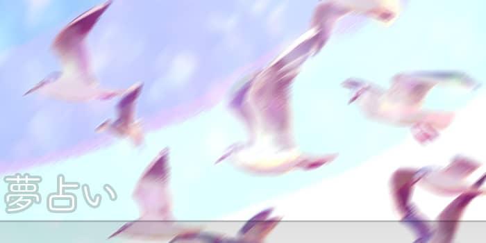 空を高く飛ぶ夢