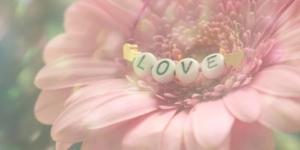 3つの愛の種類とその違い